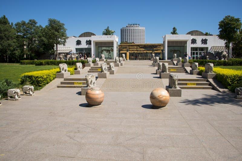 Azja Chiny, Pekin, zoo, plenerowy sceniczny punkt, obraz stock