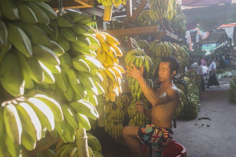 AZJA MYANMAR YANGON rynku KARMOWY OWOCOWY banan fotografia royalty free