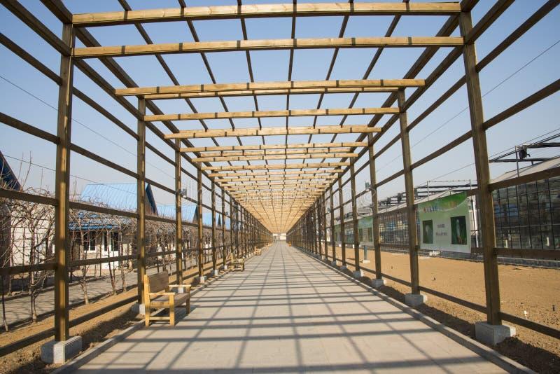 Azjata Chiny, Pekin, geotermiczny expo ogród drewniany deptak zdjęcie royalty free