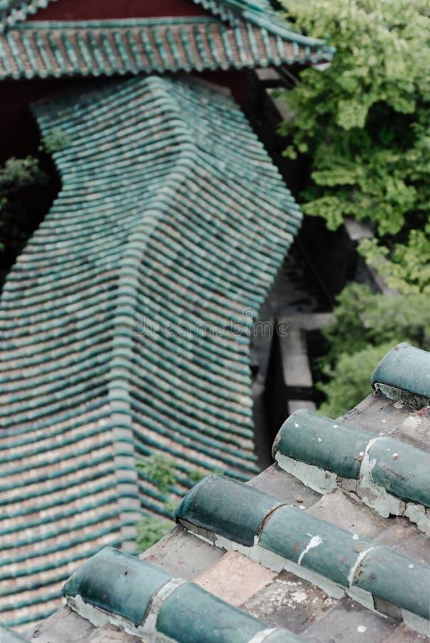 azjata linia dach obraz royalty free