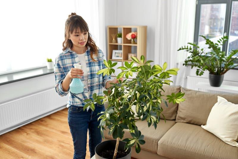 Azjatyccy kobiety opryskiwania houseplants w domu obrazy royalty free