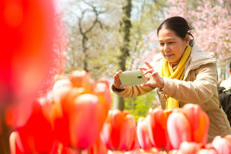 Azjatyccy ludzie biorą fotografia tulipanom kwiatu Keukenhof gospodarstwo rolne Wiosny morze zdjęcie stock