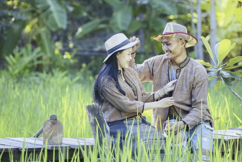 Azjatyccy rolnicy biorą opiekę ryżowa ilość w polu as well as zbiera produkt spożywczy obraz royalty free