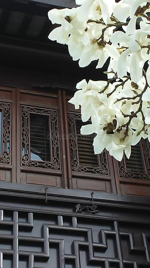 Azjatycka architektura zdjęcie stock