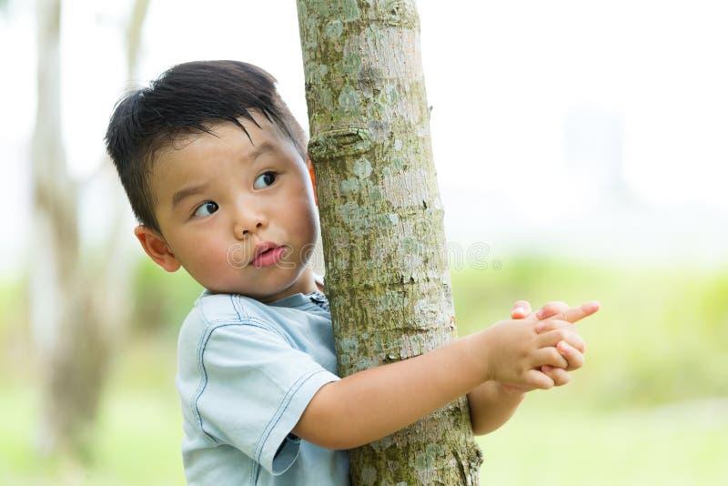 Azjatycka chłopiec wspina się up drzewa fotografia royalty free