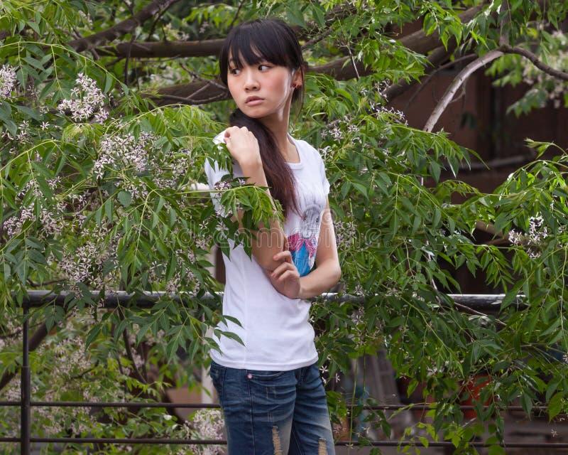 Azjatycka dziewczyny pozycja wśród liści fotografia royalty free