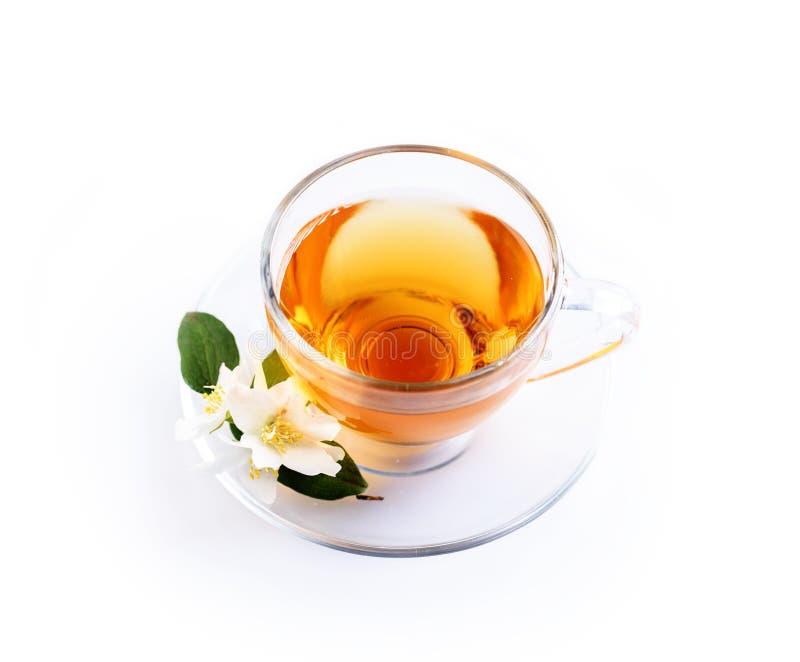 Azjatycka zielona herbata z jaśminowym kwiatem w przejrzystym teacup odizolowywającym na białym tle z odbiciem zdjęcie stock