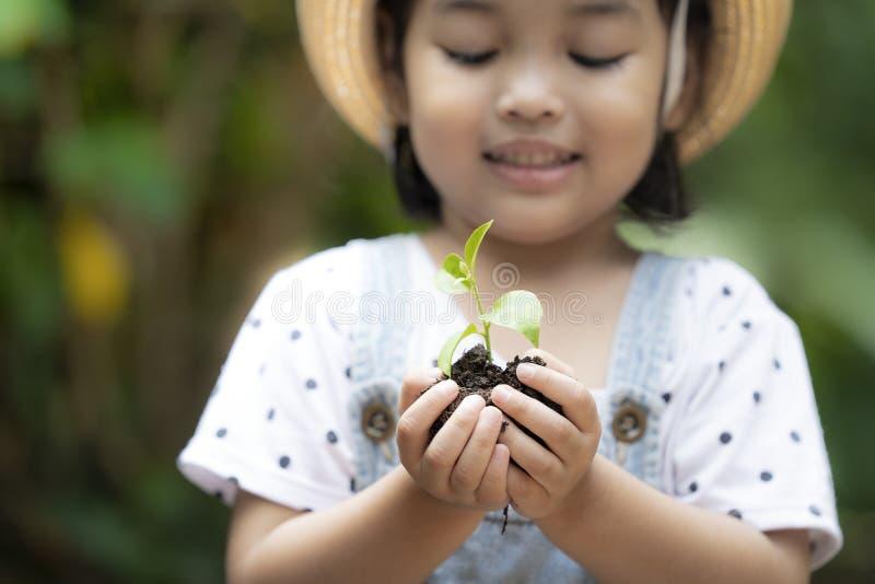 Azjatycki dzieciak trzyma młodej zielonej rośliny w ręce fotografia royalty free