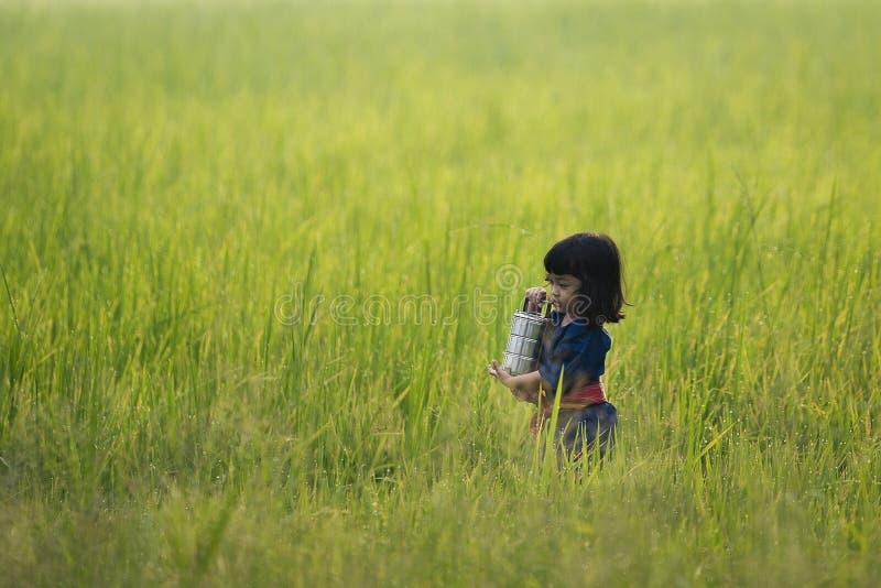 Azjatycki dzieciak w średniorolnym Tajlandzkim kultury sukni mienia jedzenia przewoźniku obraz stock