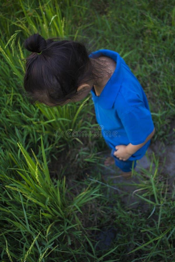 Azjatycki dziecko sztuki doskakiwanie w b?otnistej ka?u?y przy ry?u polem zdjęcie royalty free
