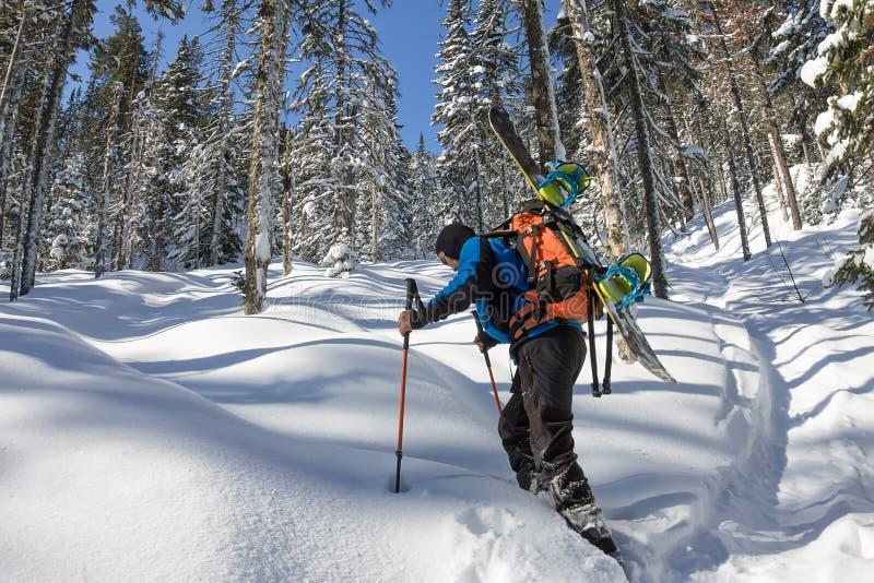 Azjatycki mężczyzny snowboarder freeride w karplach wzrasta ciężkiego w zimie na śniegu zdjęcie royalty free