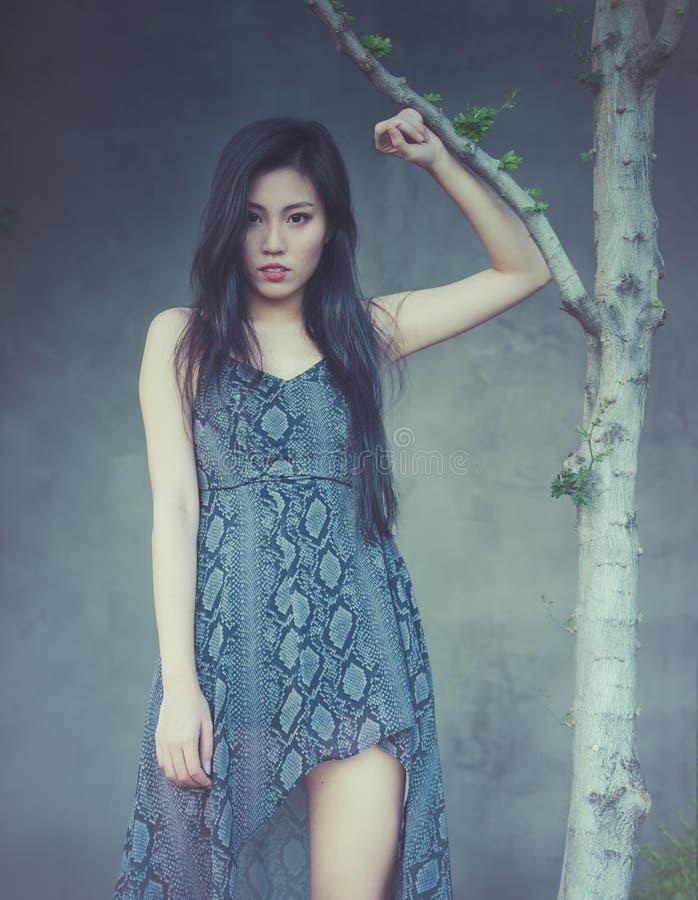 Azjatycki moda model pozuje piękny długie włosy zdjęcie royalty free