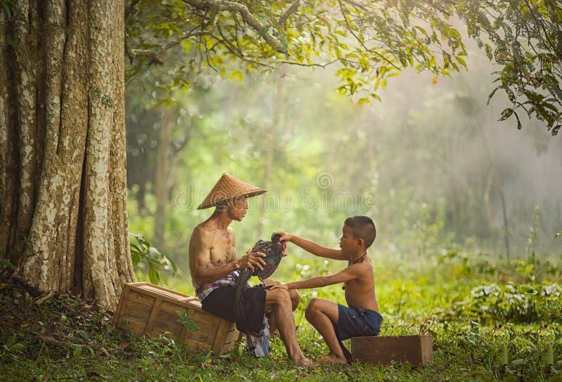 Azjatycki rolnik z synem trenuje jego walczącego koguta obrazy stock