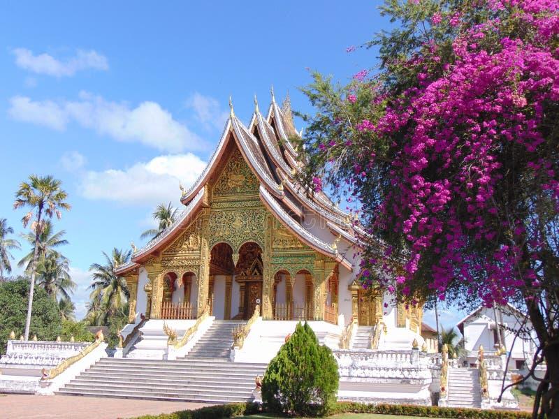 azjatykcia świątyni obraz royalty free