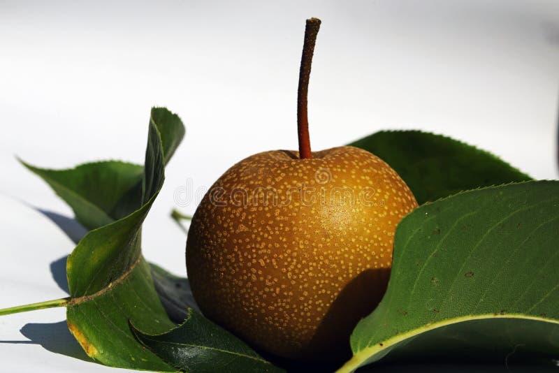 azjatykcia pear zdjęcie stock