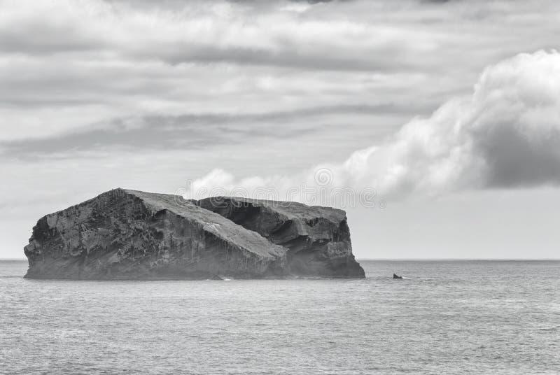 Azorean海岸 免版税图库摄影