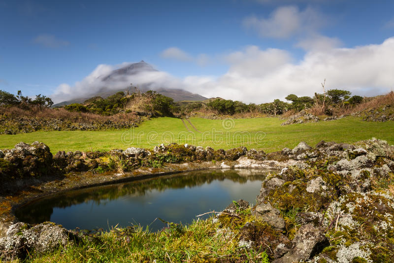 Azorean牧场地 图库摄影