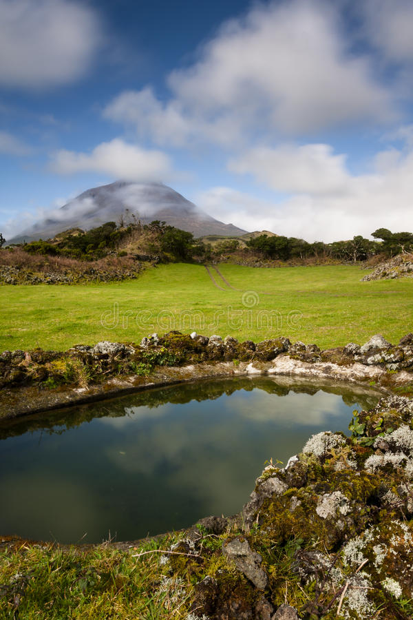 Azorean牧场地 免版税库存图片