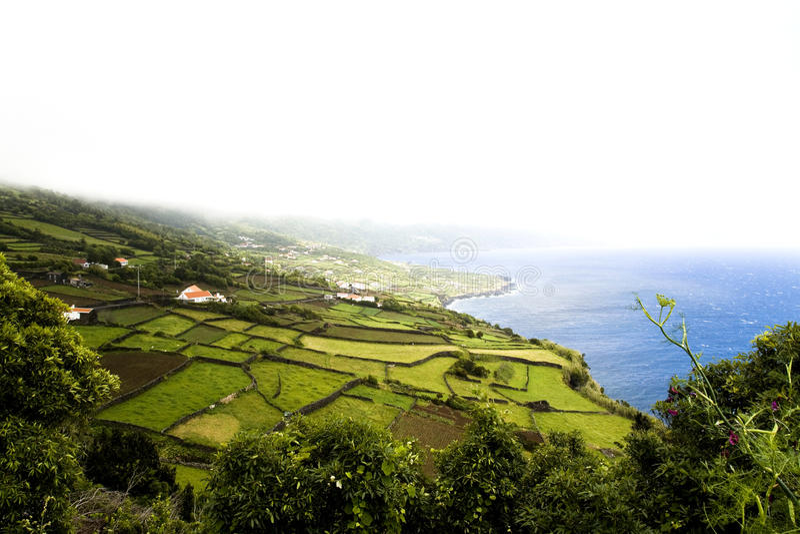 Azoren-Insel - Portugal stockfotografie