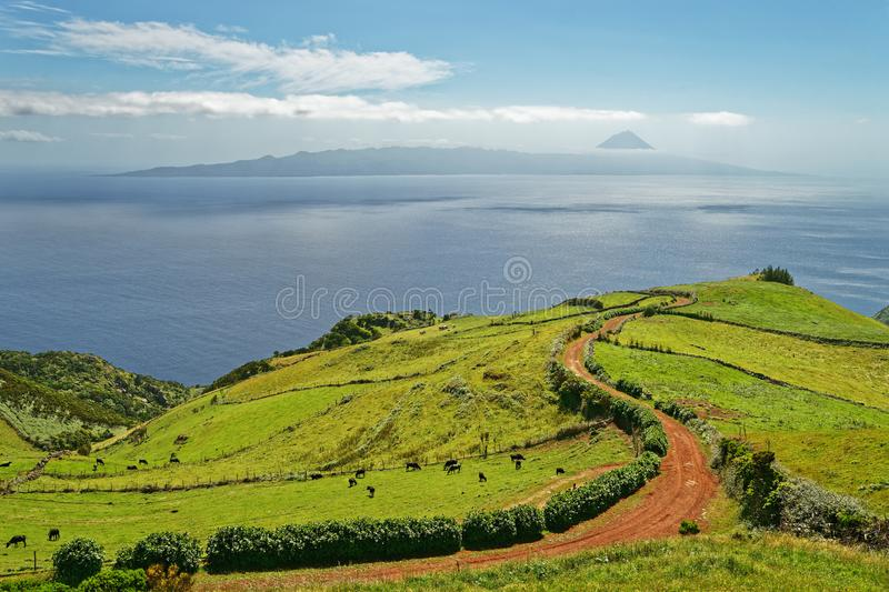 Azores - sikt till vulkan Pico arkivbilder