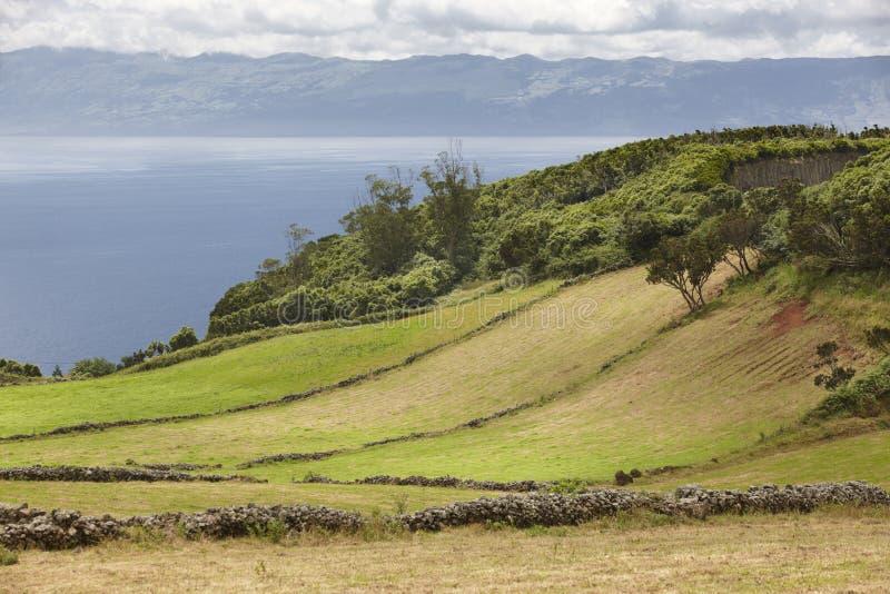 Azores zieleni krajobraz w Sao Jorge i Pico wyspie Portugalia obraz stock