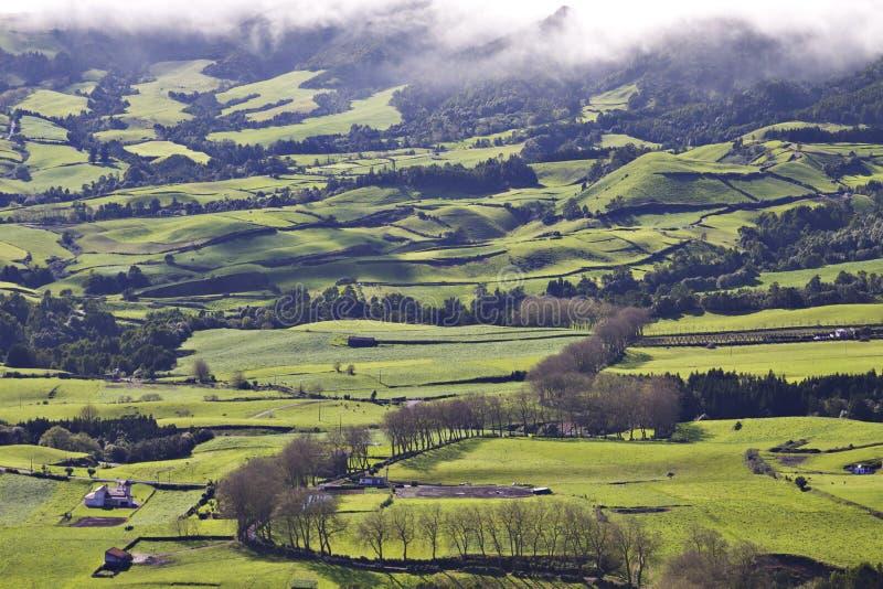 Azores: Zieleni pola zdjęcie royalty free