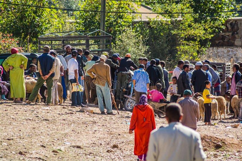 Azrou, Marokko - Oktober 15, 2013 Mensen die en schapen verkopen kopen voor Islamitisch festival Eid al Adha royalty-vrije stock foto