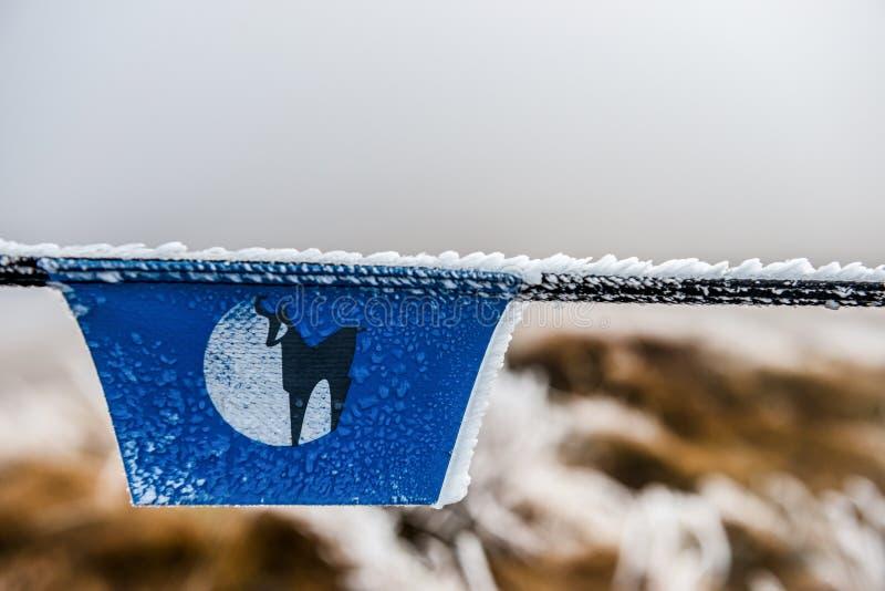 Azuis congelados assinam dentro a montanha imagem de stock royalty free