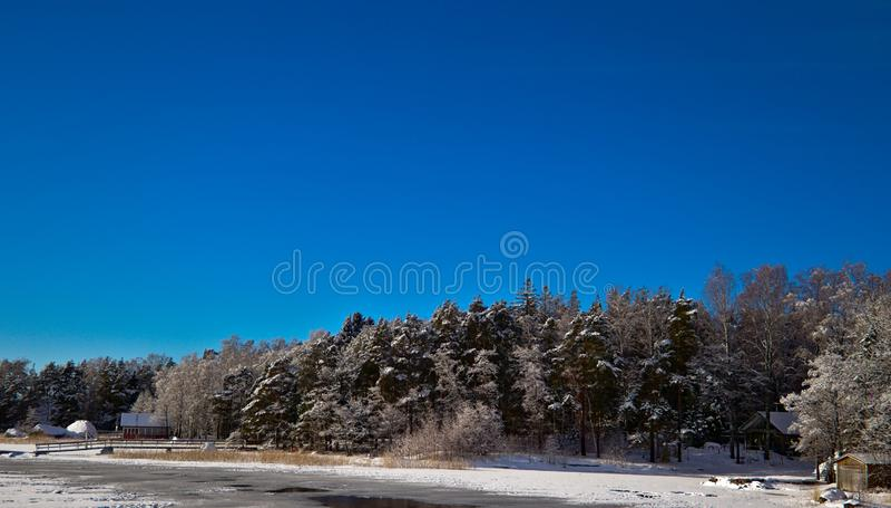 Azuis do inverno fotos de stock royalty free