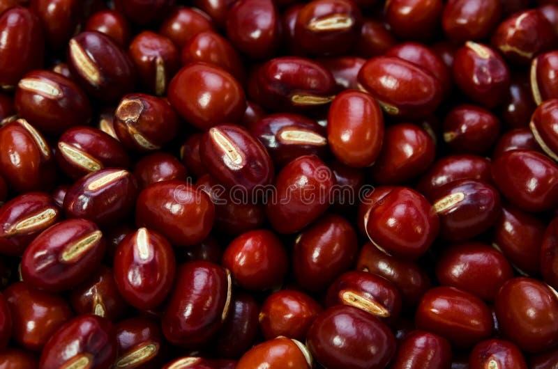 Download Azuki bean stock image. Image of healthy, organic, eating - 25179713