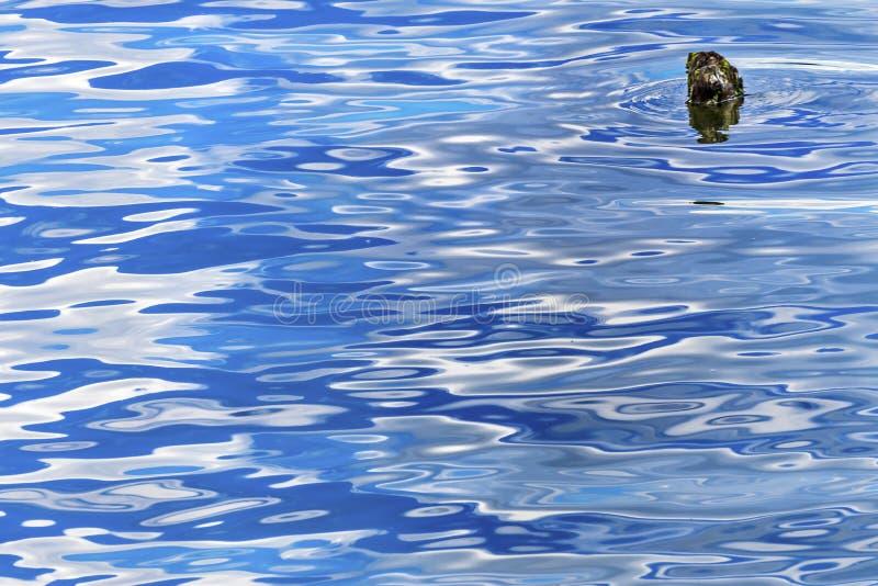 ` Azul Alene Idaho de Coeur d del lago abstract de la reflexión del agua blanca imágenes de archivo libres de regalías