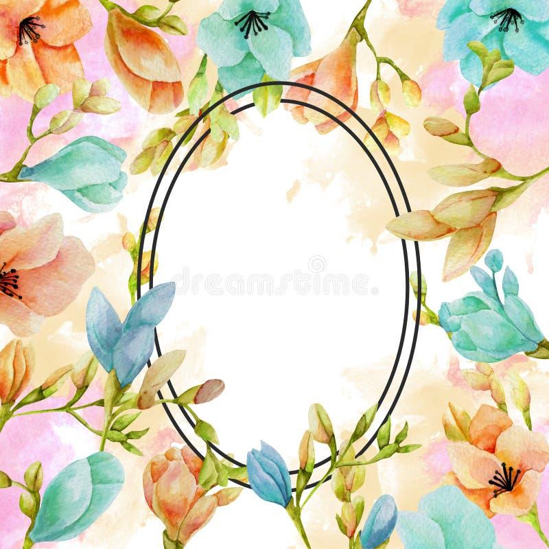 Azul da aquarela e quadro das flores da frésia do pêssego foto de stock