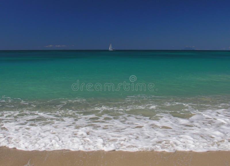 Azul do Cararibe imagem de stock
