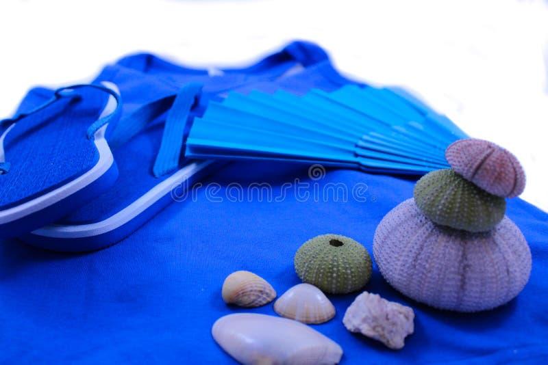 Azul do verão imagens de stock