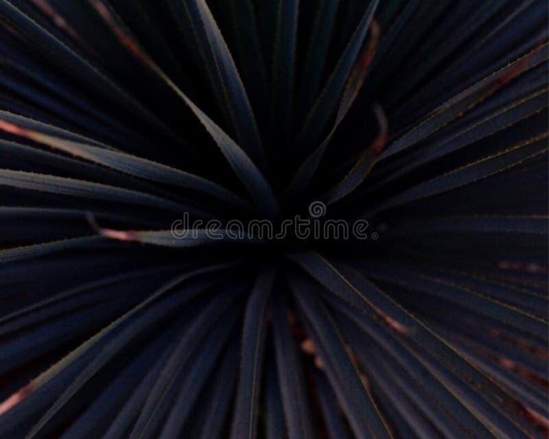 Azul profundo foto de archivo libre de regalías