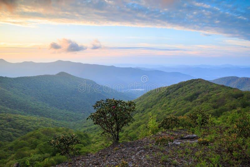 Azul Ridge Mountains North Carolina da manhã fotos de stock