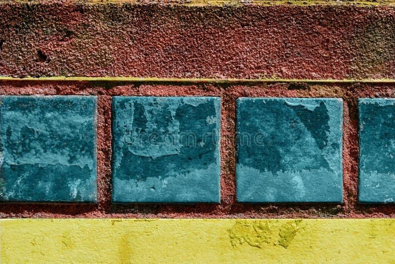 Azulejos Tropicales Imágenes de archivo libres de regalías