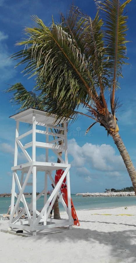 Azurblauer Strand exotisches Jamaika stockfotografie