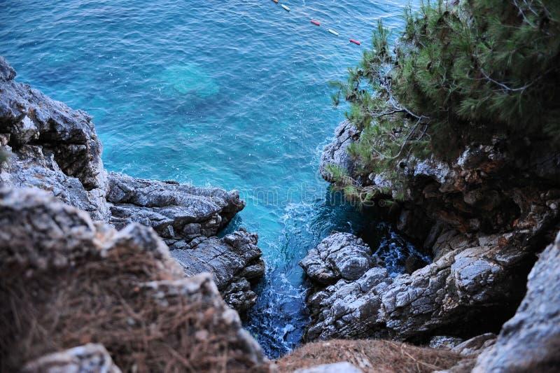 Azurblaues Wasser des adriatischen Meeres am Fuß einer Klippe überwältigt mit Tannenbäumen, Montenegro, Europa stockfotos