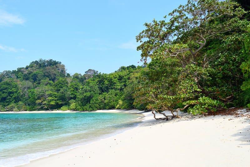 Azure Sea Water, sable blanc, arbres verts - crique du ` s de Neil à la plage de Radhanagar, île de Havelock, Andaman et Nicobar, photographie stock