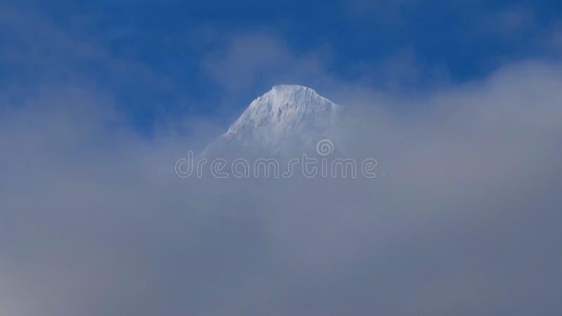 Bâti Nilgiri dans le mustang en Himalaya photo libre de droits