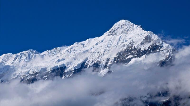 Bâti Nilgiri dans le mustang en Himalaya photo stock