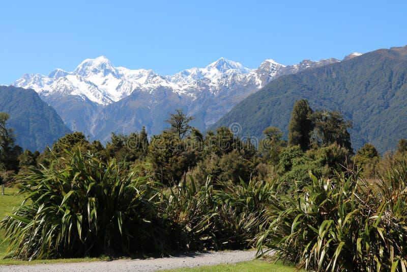 Bâti Tasman et cuisinier de bâti, Nouvelle-Zélande photo libre de droits