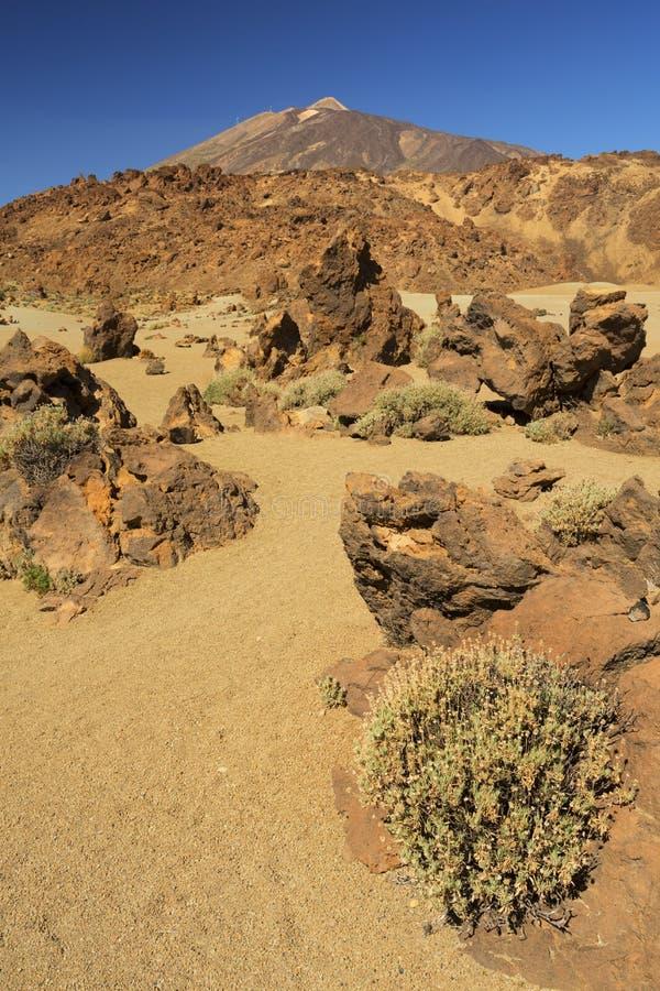 Bâti Teide sur Ténérife, Îles Canaries, Espagne photo libre de droits