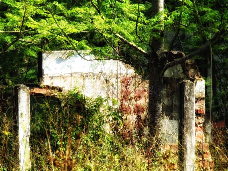 Bâtiment abandonné dans les buissons photo libre de droits