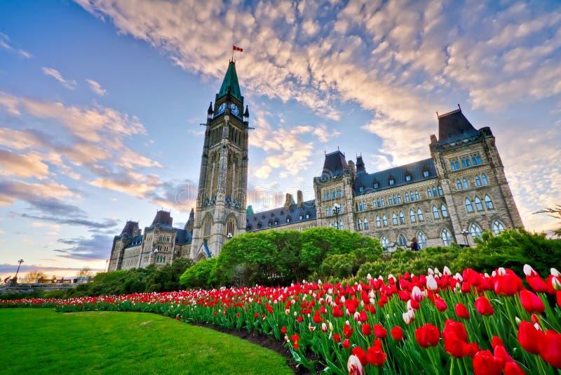Bâtiment du Parlement d'Ottawa images libres de droits