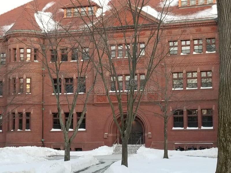 Bâtiment historique sur le campus de Harvard photographie stock