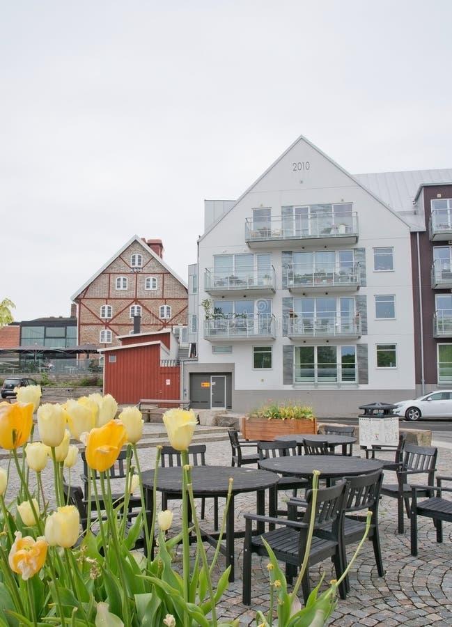 Bâtiment moderne résidentiel avec des tulipes image stock