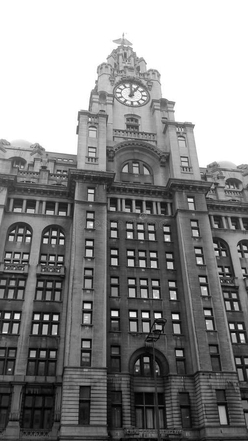Bâtiments de foie, Liverpool photographie stock