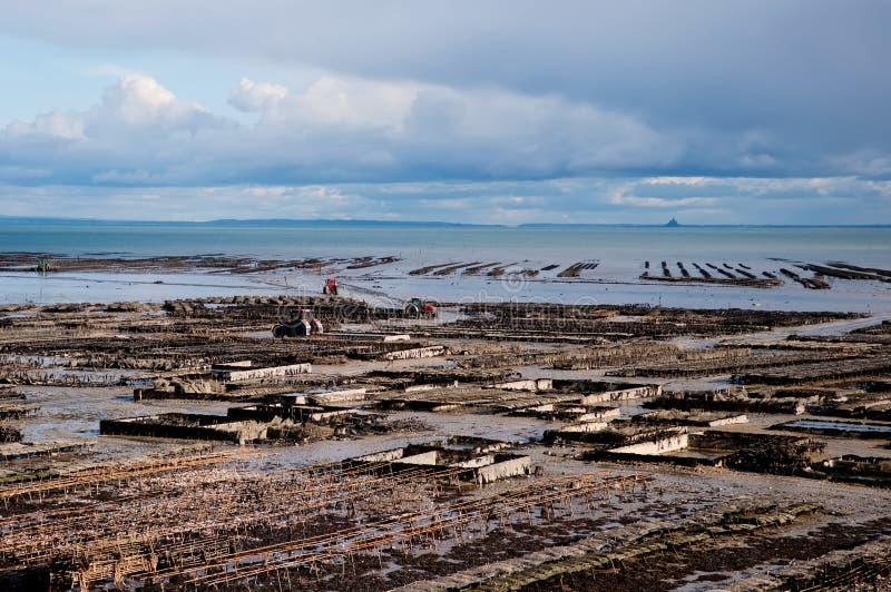 Bâtis d'huître dans Cancale, France. image libre de droits